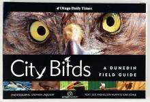 SPECIAL: City Birds