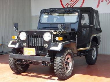 1996 Mitsubishi Jeep