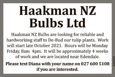 Looking For Reliable And Hardworking Staff